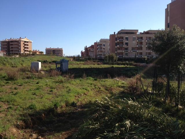 Read more about the article Cinquina, le opposizioni presentano risoluzione per esproprio aree verdi via Muscetta