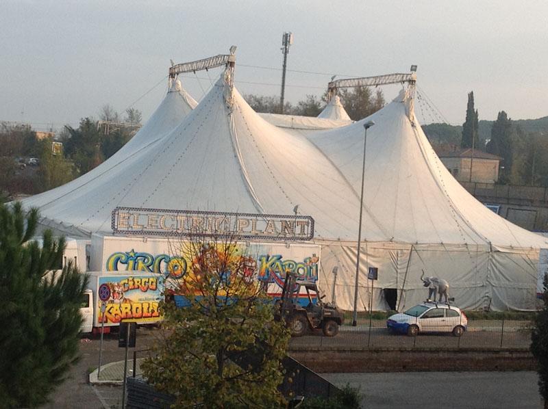"""Read more about the article Settebagni, Corbucci (Pd): """"la barbarie del circo sotto casa"""""""